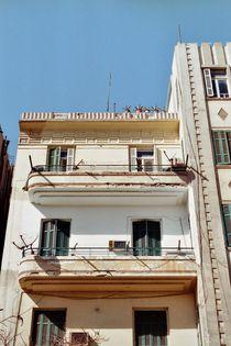 Houses of Cairo von Paula Linke