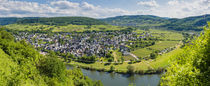 Mosel bei Pünderich (3) by Erhard Hess