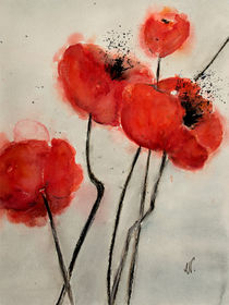 Red poppy - Roter Mohn by Chris Berger