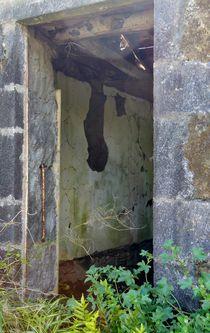 Der Verfall hat das Haus im Griff by art-dellas