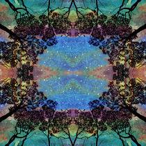 Forest Aurora by Karen Black