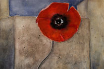 At the wall - red poppy von Chris Berger