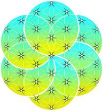 Flower of Life / Seed of Life von fraktalini