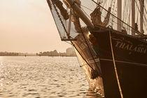 """Segelschiff """"Thalassa"""" von renard"""