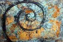 Muschel Geometrie von Olga David