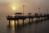 Silhouetted Fishing Pier by Jim Corwin