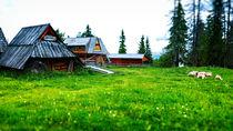 Traditional Polish scenery. Gubalowka, Poland by Tomas Gregor