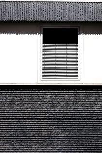 Linear von Bastian  Kienitz