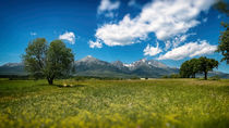 Landscape Under the Tatra Mountains von Tomas Gregor