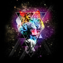 Cosmic Tiger by Ali GULEC