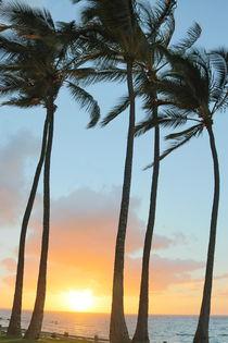 Maui Sunset by julia-go