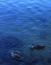 Depth of Blue von Jordana Alexandrea