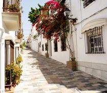 Marbella Street Old Town by David Bishop