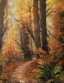 The Path by Apostolescu  Sorin