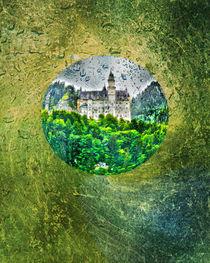 Neuschwanstein castle Germany  by Michael Naegele
