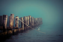 im Nebel von Doreen Böhnke