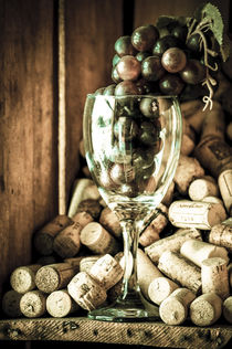 Wine and grapes by freudexplicabh