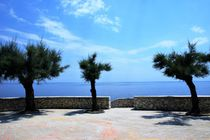 Bäume und das Meer by karneol