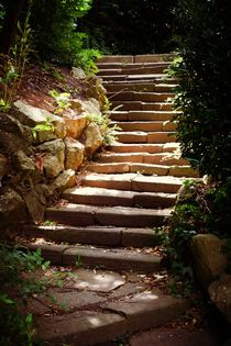 Steps Beneath The Sun von CHRISTINE LAKE