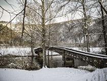 Alte Steinbrücke bei Beuron - Naturpark Obere Donau von Christine Horn