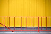 Rotgelb von Bastian  Kienitz
