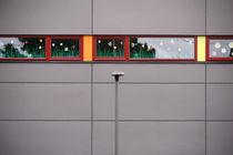 Blumen im Fenster von Bastian  Kienitz