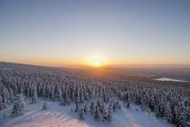Harzer Winterlandschaft von Patrice von Collani
