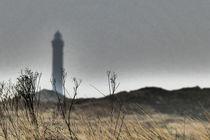 Norderney von maja-310