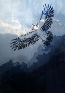 Eagle von hanna streif