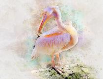 pink Pelican von Elena Oglezneva
