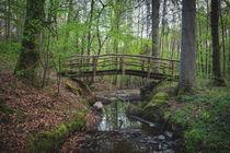 Wooden bridge by Maximilian Müller