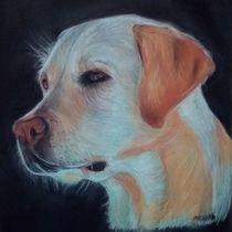 dogportrait by Marion Reinke
