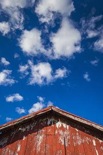 Texas Skies von Maresa Pryor-Luzier