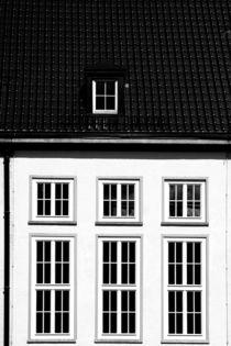 Hohe Fenster von Bastian  Kienitz