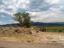Landschaft in Utah by Frank  Kimpfel