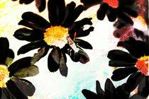 Bock auf Farbe  von Bastian  Kienitz