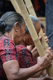 At a funeral ceremony in Tana Toraja, Sulawesi von firefly