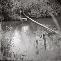 Quiet river von Kiryl Kaveryn