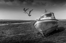 Abandoned Boats at Penclawdd estuary von Steve Evans