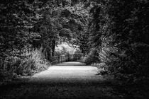 Spaziergang am Kanal von Petra Dreiling-Schewe