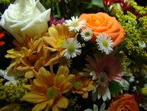 Brazilian Flowers 012 by ALOIZIO NASCIMENTO