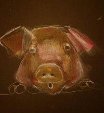 Schwein von Karen Klingner
