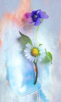 Veilchen trifft Gänseblümchen by Renate Grobelny