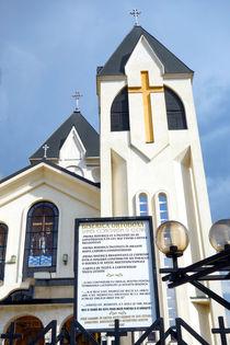 From Brasov - New Church by Enache Armand Iustinian