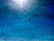 Im tiefen Blau im Licht von moira