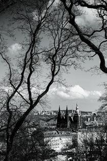 Prager Burg by foto-m-design