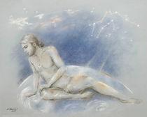Ganymed der Bewusstseinslenker  von Marita Zacharias