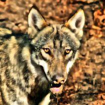 Glamour Wolf von kattobello