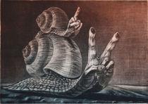 Schnecken von Anna Eliza Lukasik-Fisch