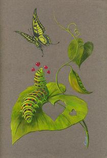 Raupe und Schmetterling von Anna Eliza Lukasik-Fisch